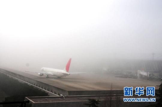 图片 大雾突袭申城 浦东国际机场航班大面积延