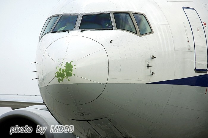[原创]发现这个小日本是~~~酒糟鼻子! BOEING 767-300 JA601F