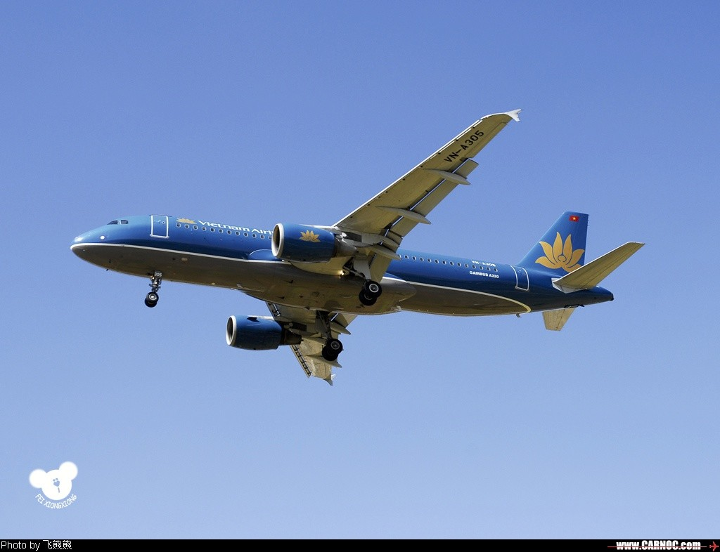 [原创]( : ^v^^v^^v^ 品 味 金 莲 花 ^v^^v^^v^ : ) AIRBUS A320-200
