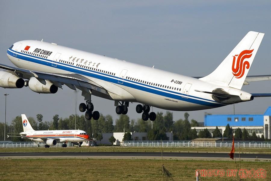[原创]绝对想念的国航340!不知道它们在上海过得好不好~!