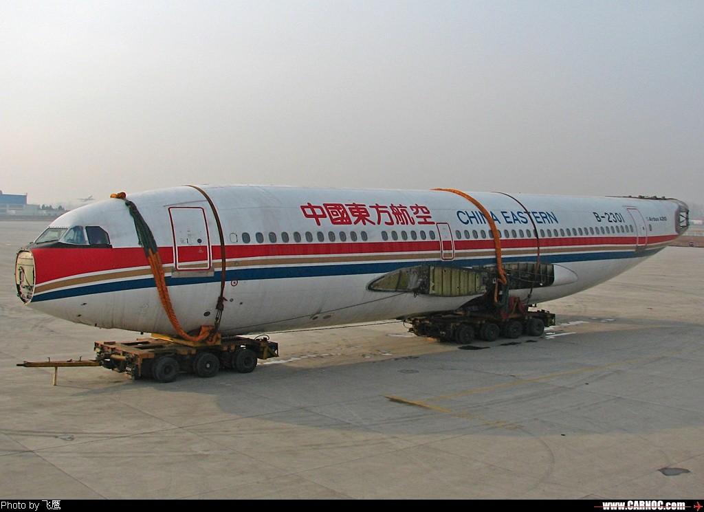 [原创]####四肢都被剁去的人被称为 .. 人棍 ,那这可怜的就是 .. 机棍#### AIRBUS A310 B-2301