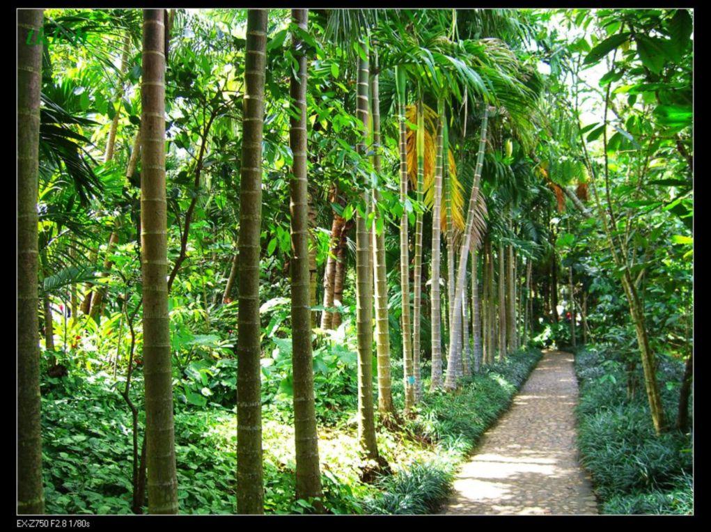 >>[原创]美丽风景,大自然的馈赠