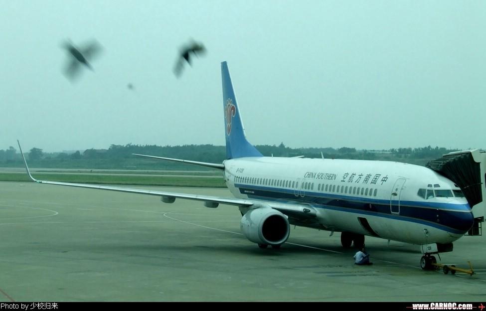 [原创]禄口,10周年纪念,预热。 B737-83N(WL) B-5128 中国南京禄口机场
