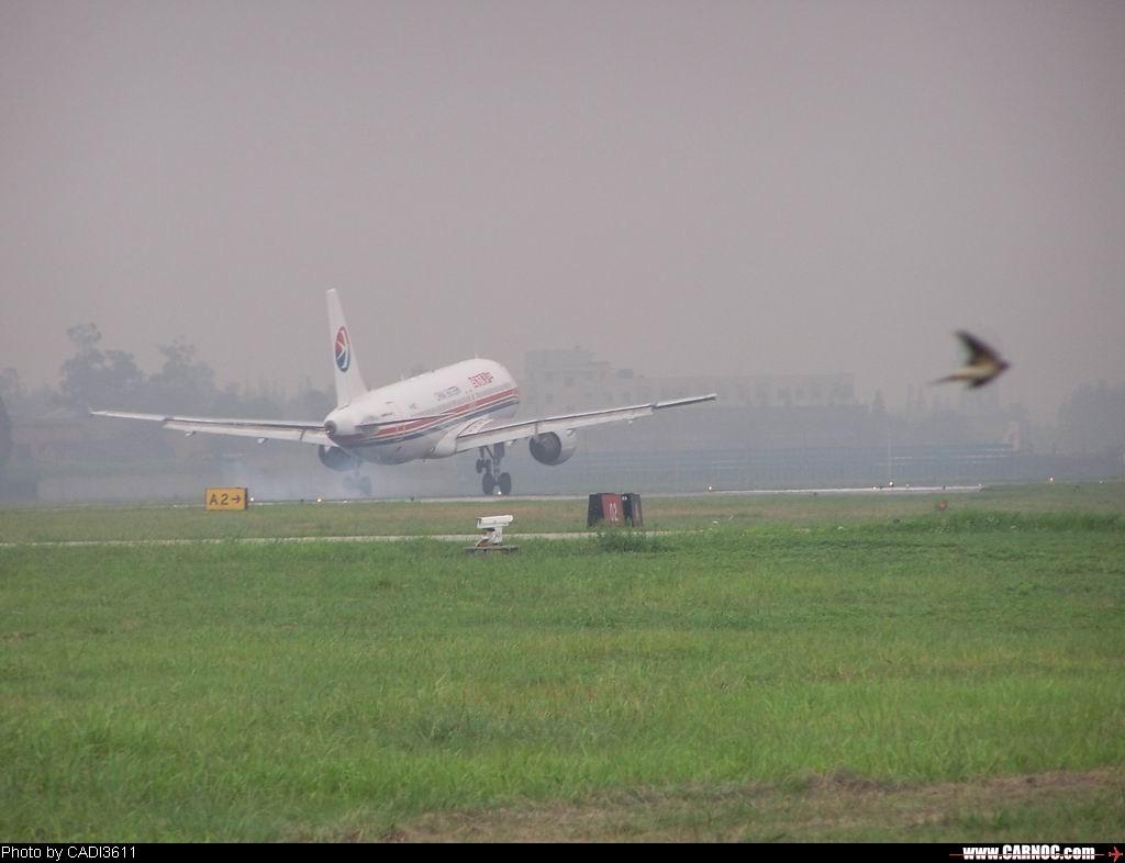 """Re:[原创]从""""红灯区""""开始贴 AIRBUS A320  中国成都双流机场"""