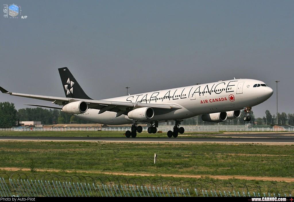Re:[原创]星空联盟几个大当家的绘萃,大家来补充` AIRBUS A340-300  中国北京首都机场
