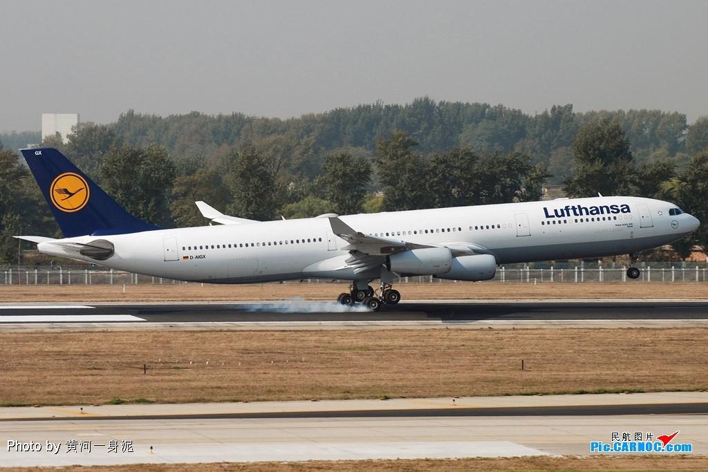 Re:[原创]我眼里的德国汉莎航空 AIRBUS A340-300 D-AIGX 中国北京首都机场