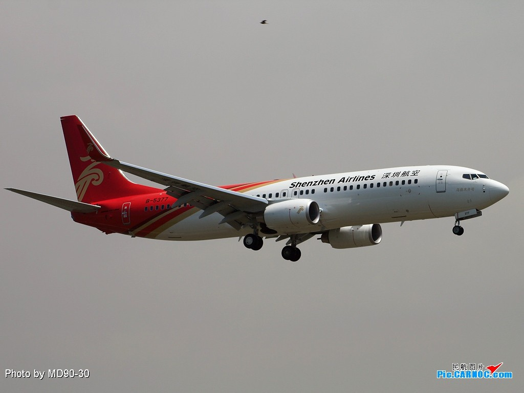 Re:[原创]RP决定运气A--宝安遭遇深圳打机队,一小时探寻海堤战场 BOEING 737-800 B-5377 中国深圳宝安机场