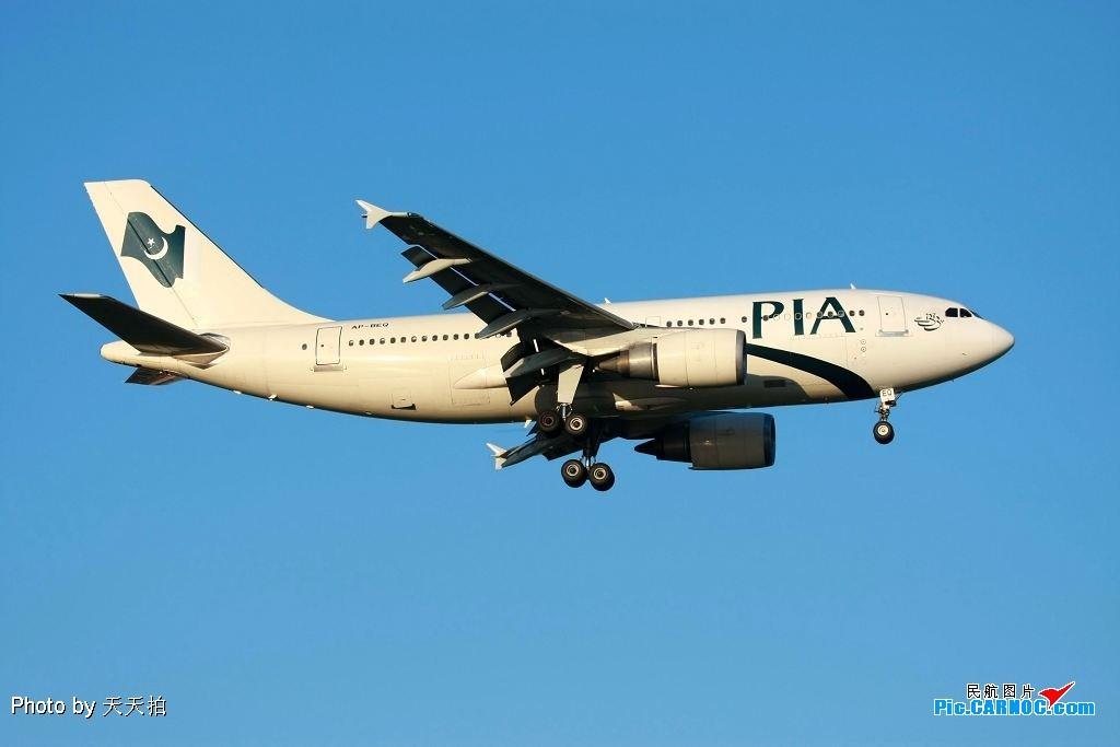 空中飞毯 A320 AP-BEQ 中国北京首都机场