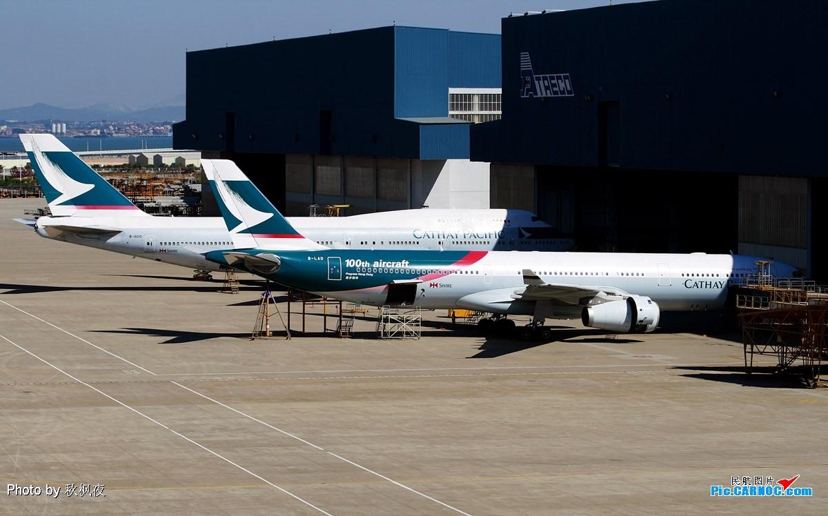 Re:[原创]《小强学飞ing》大杂烩篇——小强潜水许久,今日终可释放一下积攒的高崎与太古大灰机啦! A330-343X B-LAD 中国厦门机场