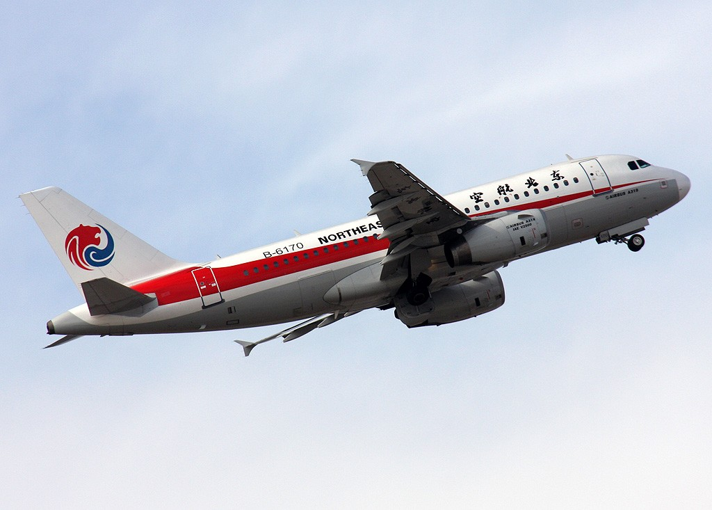 Re:[原创]飞天牡丹,附送东北航空 AIRBUS A319-100 B-6170 中国北京首都机场