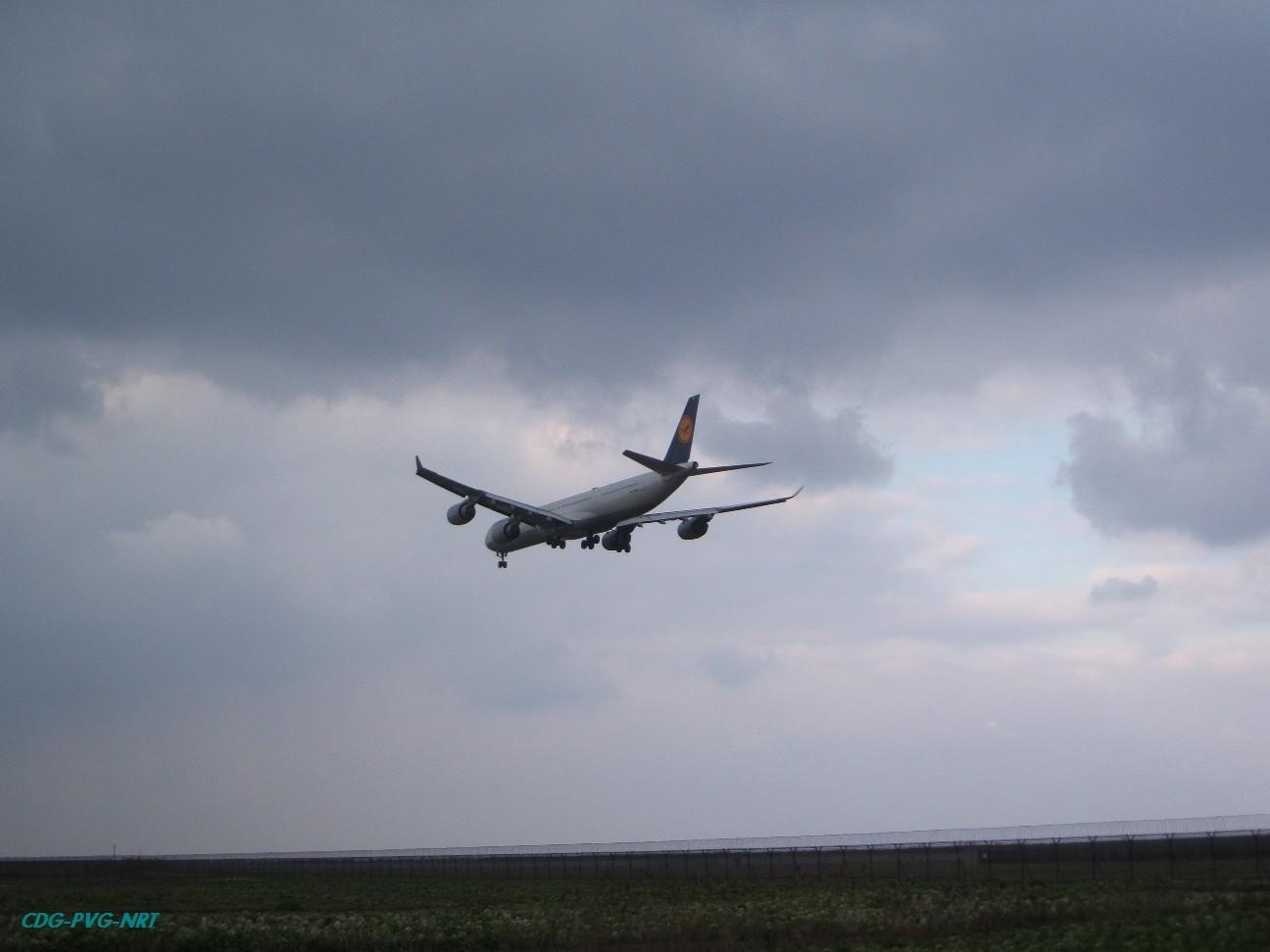 Re:新年快乐,仍然PVG AIRBUS A340-642 D-AIOH 中国上海浦东机场