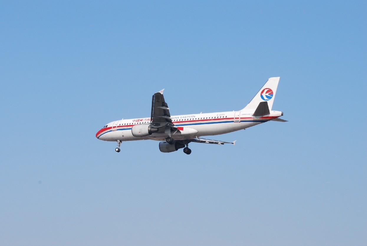 Re:[原创]时隔一个月,冒一下泡。发图90张 AIRBUS A320-214 B-2203 中国上海浦东机场