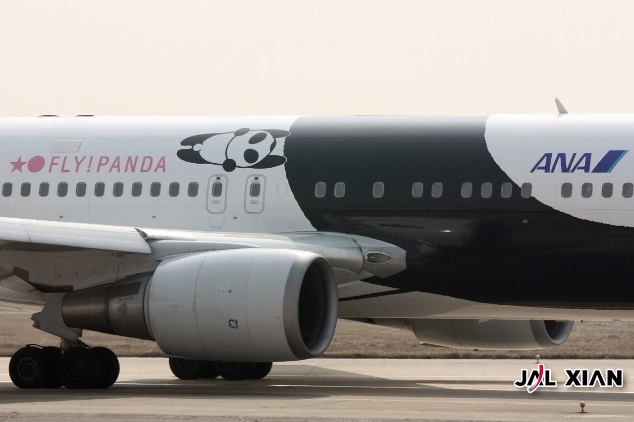 Re:[原创]『JAL XIAN与飞机系列』我在虹桥的一天 BOEING 767 JA606A 中国上海虹桥机场