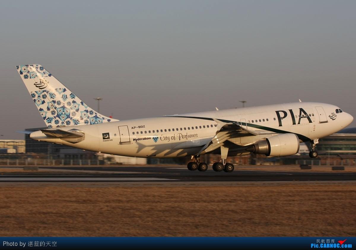 Re:[原创]又向南运行了,不能错过,光线飞机都还不错。。。。 AIRBUS A310-308 AP-BDZ 中国北京首都机场