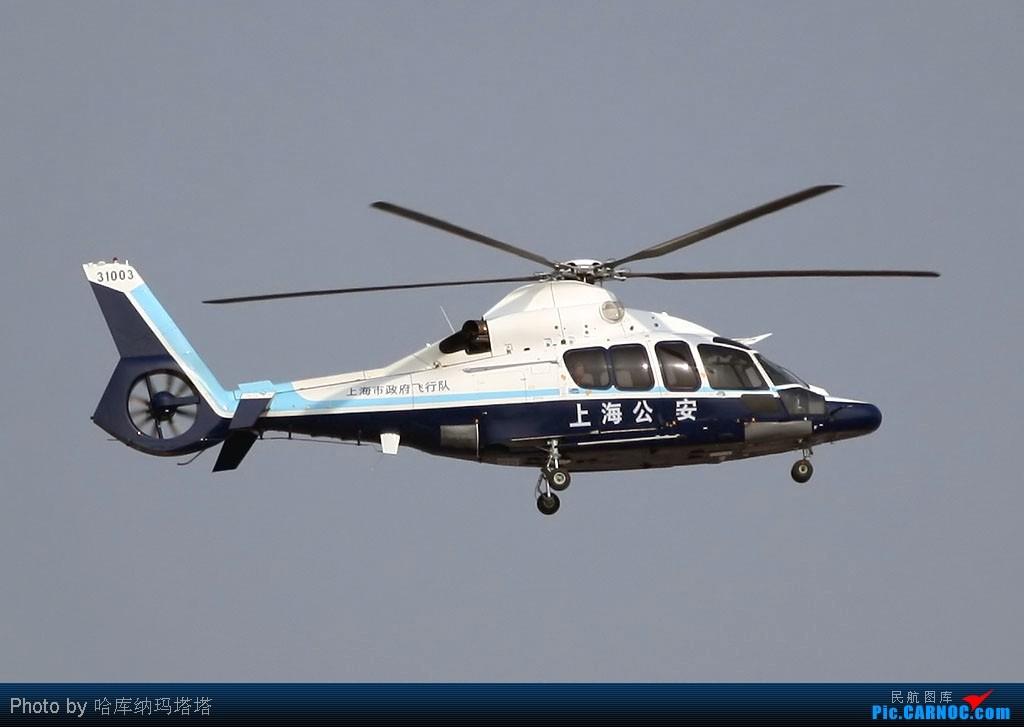 Re:[原创]{哈库拍机}直生机太小 200mm都不够(请看后2张 稍微清楚点) 海豚N3 31003 中国上海虹桥机场