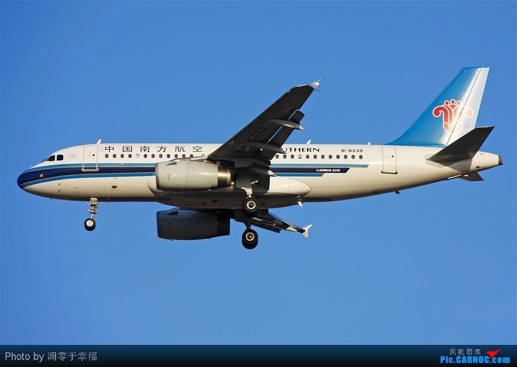 Re:[原创]飞翔--发在三十岁生日前三十天!! AIRBUS A319-100 B-6239 中国北京首都机场
