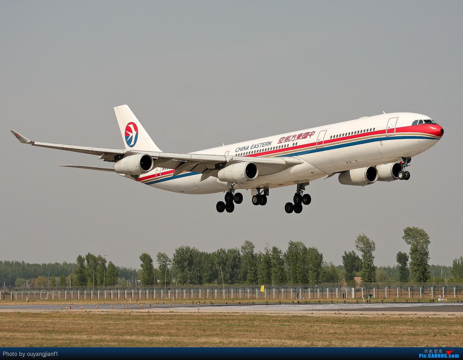 [原创]快有一年没去西跑道了,拍机的感觉已逐渐淡忘,但是只要心中有梦,手中有单反,一切皆有可能! AIRBUS A340-300 B-2384 北京