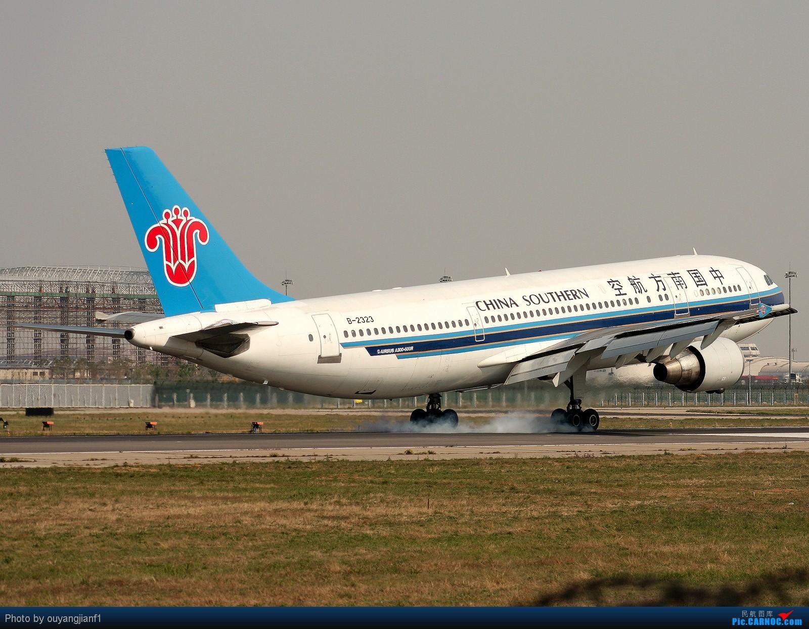 Re:[原创]快有一年没去西跑道了,拍机的感觉已逐渐淡忘,但是只要心中有梦,手中有单反,一切皆有可能! AIRBUS A300-600R B-2323 北京