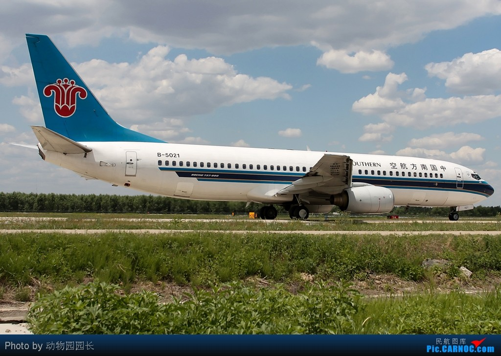 Re:[原创][CASG]★★★最爱^^^^!!——蓝天白云下的那些飞机!!!★★★ BOEING 737-800 B-5021 中国沈阳桃仙机场