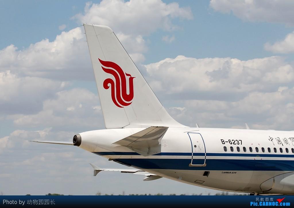 Re:[原创][CASG]★★★最爱^^^^!!——蓝天白云下的那些飞机!!!★★★ AIRBUS A319-100 B-6237 中国沈阳桃仙机场