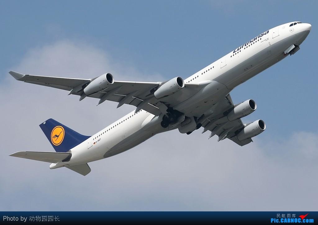 [原创][CASG]★★★很喜欢四发的大家伙,可惜俺们这里太少了!——好天气下的几张大小飞机!★★★ AIRBUS A340-300 D-AIGT 中国沈阳桃仙机场