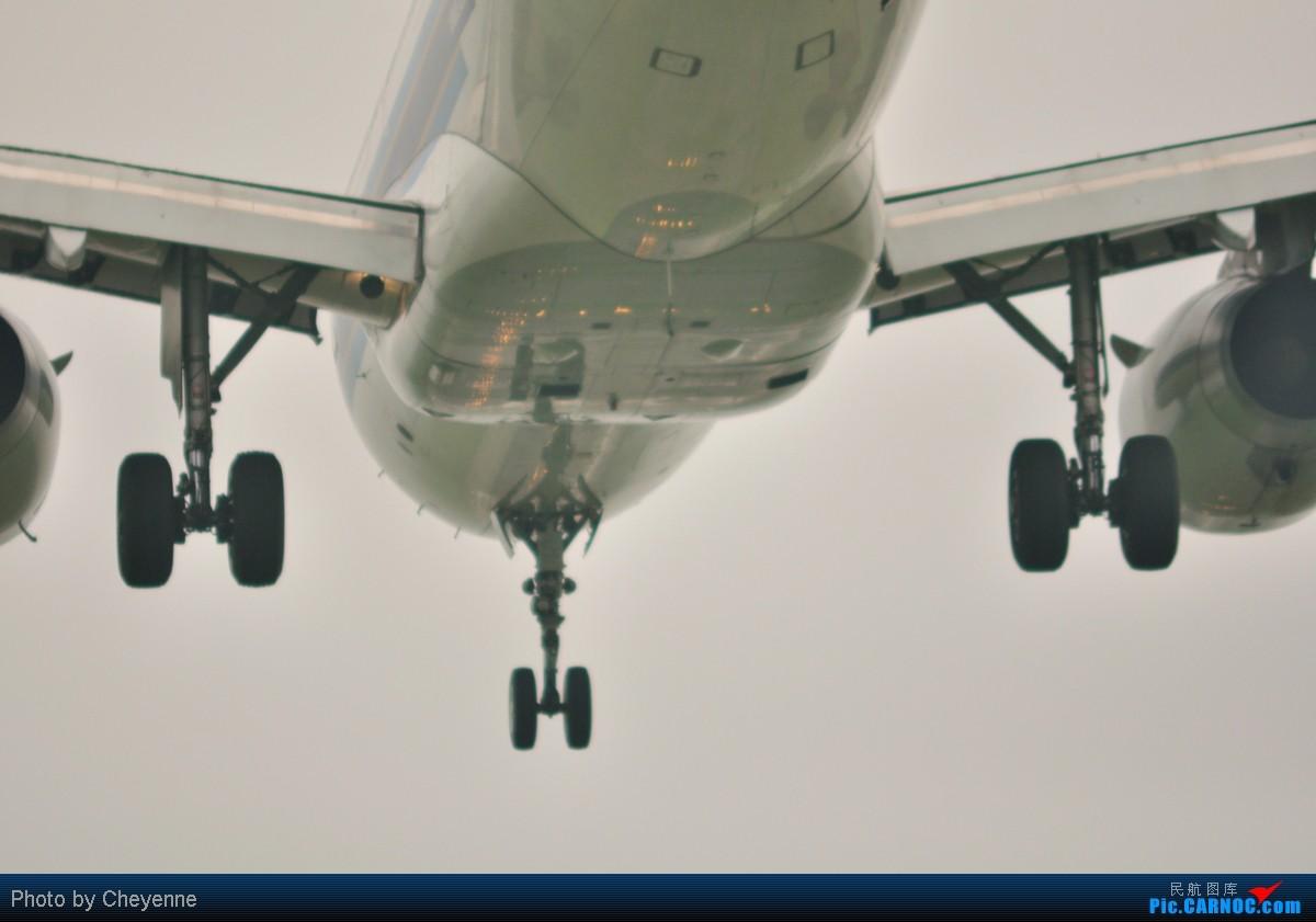 Re:[原创]管它天有多烂,多阴,多雾,打机还是得进行的!!! AIRBUS A319-100 B-6020 中国成都双流机场