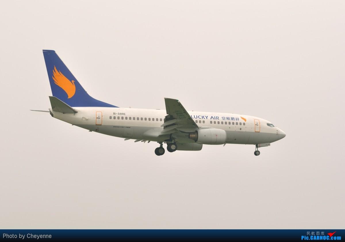 Re:[原创]管它天有多烂,多阴,多雾,打机还是得进行的!!! AIRBUS A319-100 B-2300 中国成都双流机场