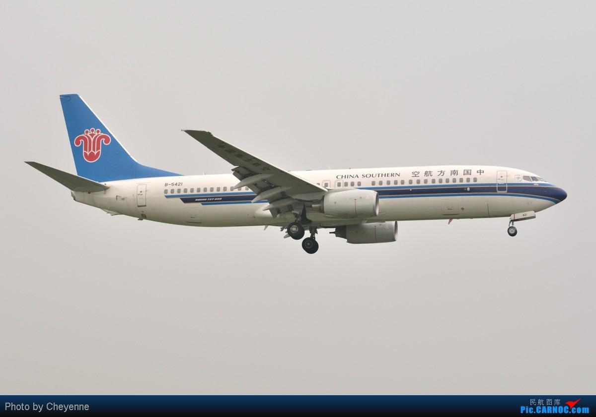 Re:[原创]管它天有多烂,多阴,多雾,打机还是得进行的!!! BOEING 737-800 B-5421 中国成都双流机场