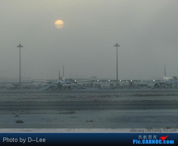 Re:[原创]多哈机场的倩影    Qatar DOHA