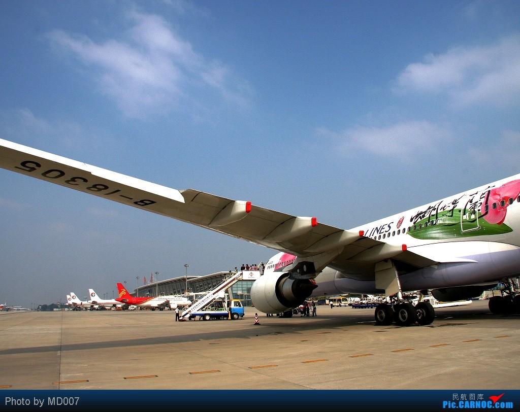 Re:※蝴蝶兰※  真的是※蝴蝶兰※ 从台北到西安! AIRBUS A330-300 B-18305 中国西安咸阳机场