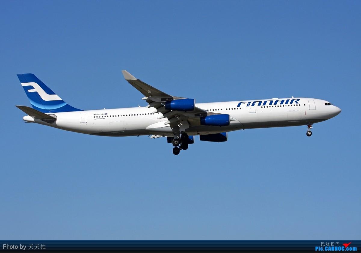 [原创]01东边小路旁拍机好角度 AIRBUS A340-300 OH-LQC 中国北京首都机场