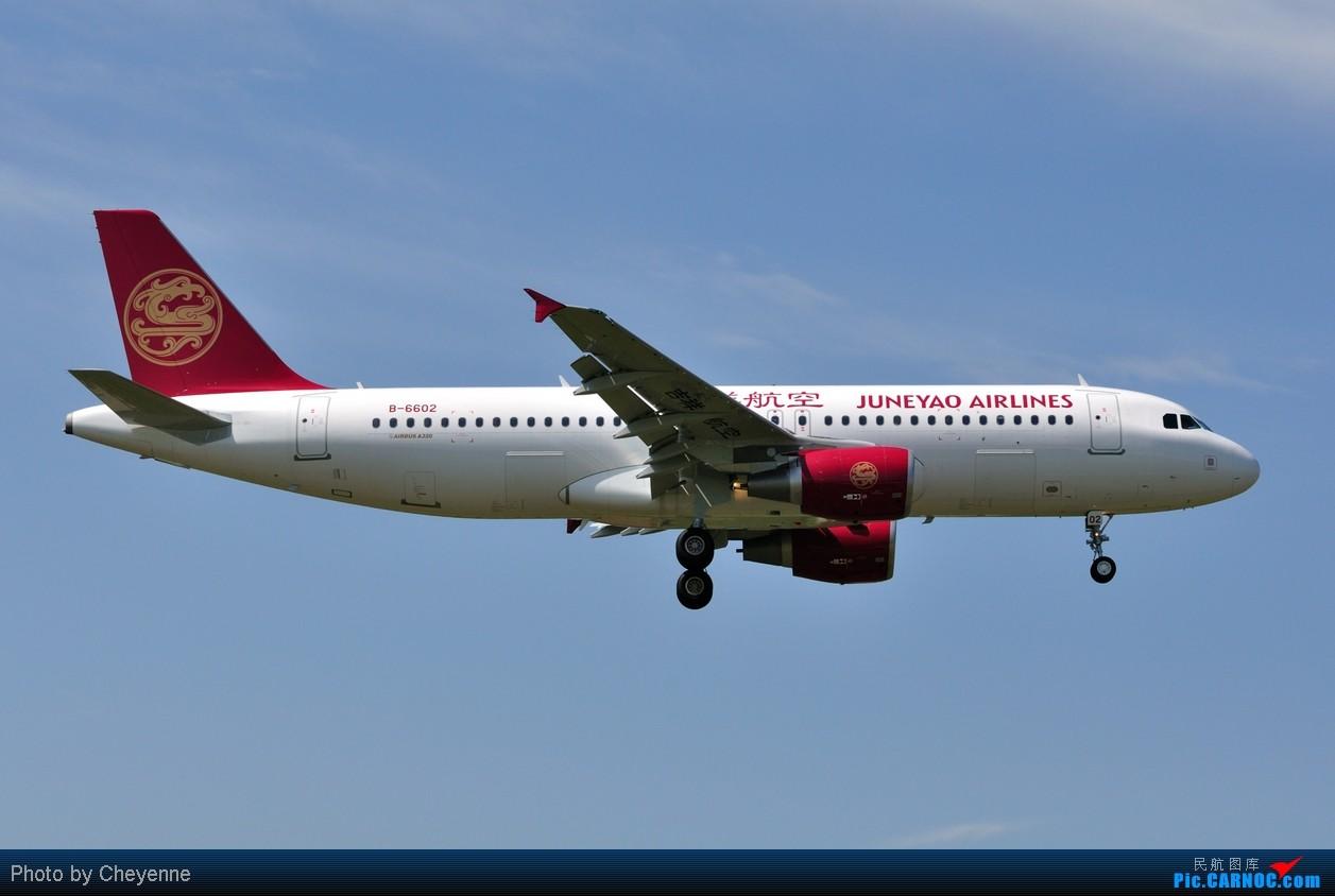 Re:[原创]晴空万里贺佳节,婵娟金凤舞双流! AIRBUS A320-200 B-6602 中国成都双流机场