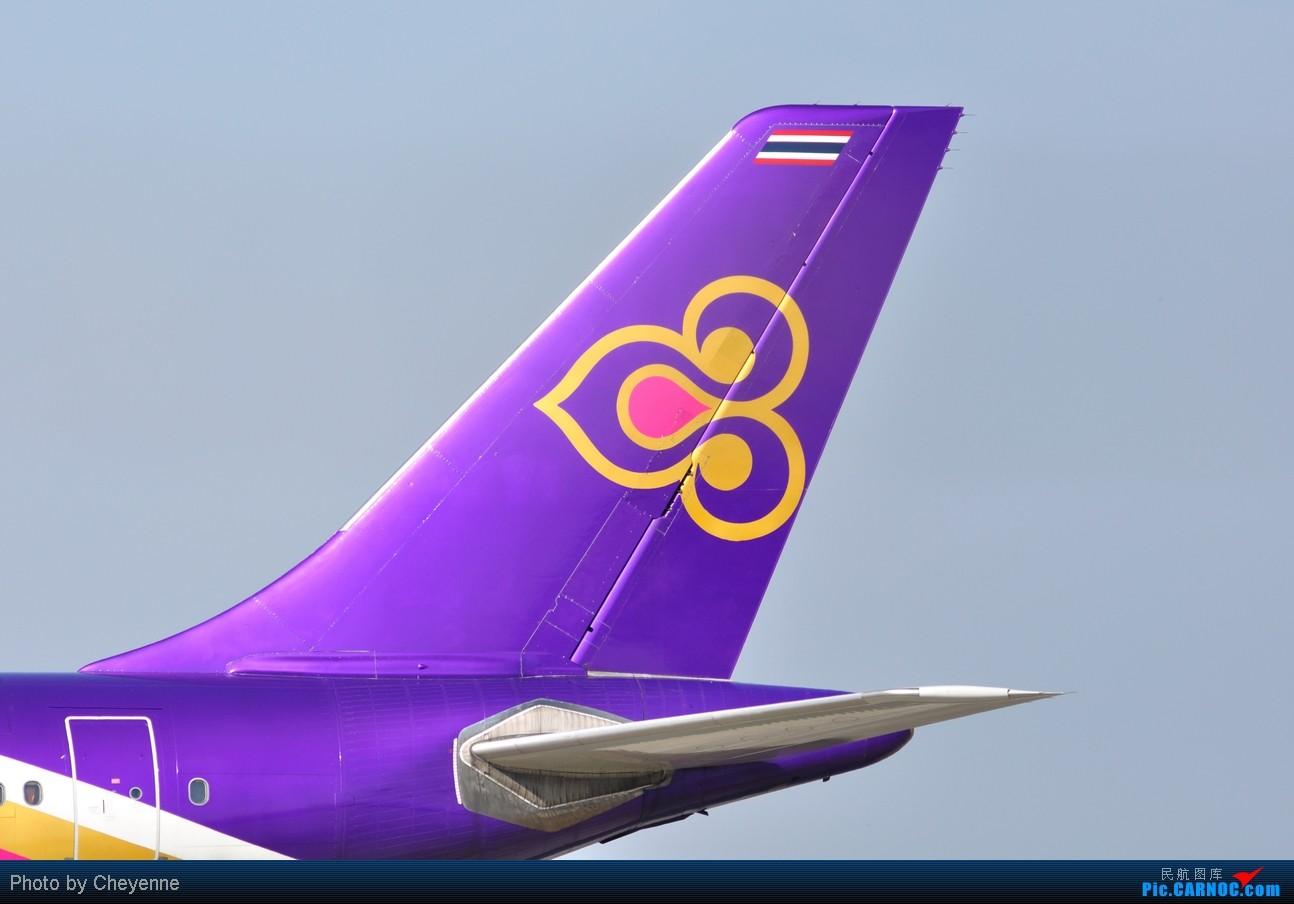 Re:[原创]晴空万里贺佳节,婵娟金凤舞双流! AIRBUS A300 HS-TAP 中国成都双流机场