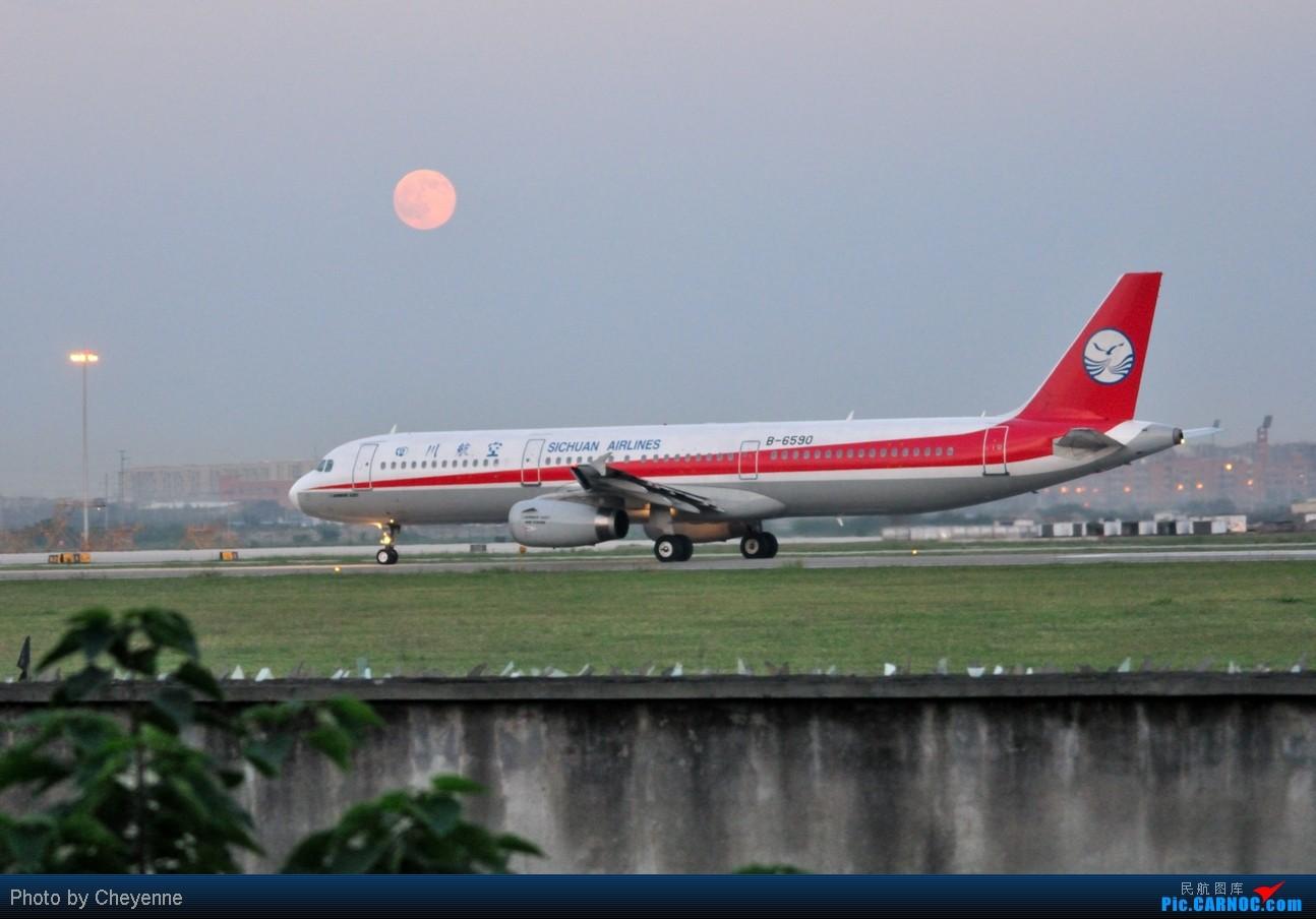 Re:[原创]晴空万里贺佳节,婵娟金凤舞双流! AIRBUS A321-200 B-6590 中国成都双流机场