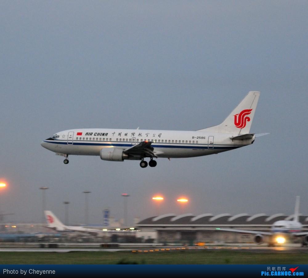 Re:[原创]晴空万里贺佳节,婵娟金凤舞双流! BOEING 737-300 B-2586 中国成都双流机场
