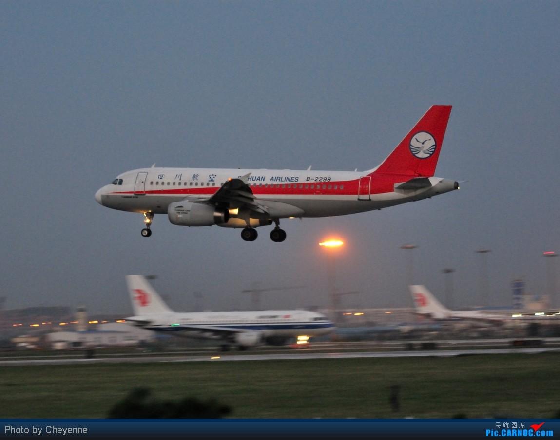 Re:[原创]晴空万里贺佳节,婵娟金凤舞双流! AIRBUS A319-100 B-2299 中国成都双流机场