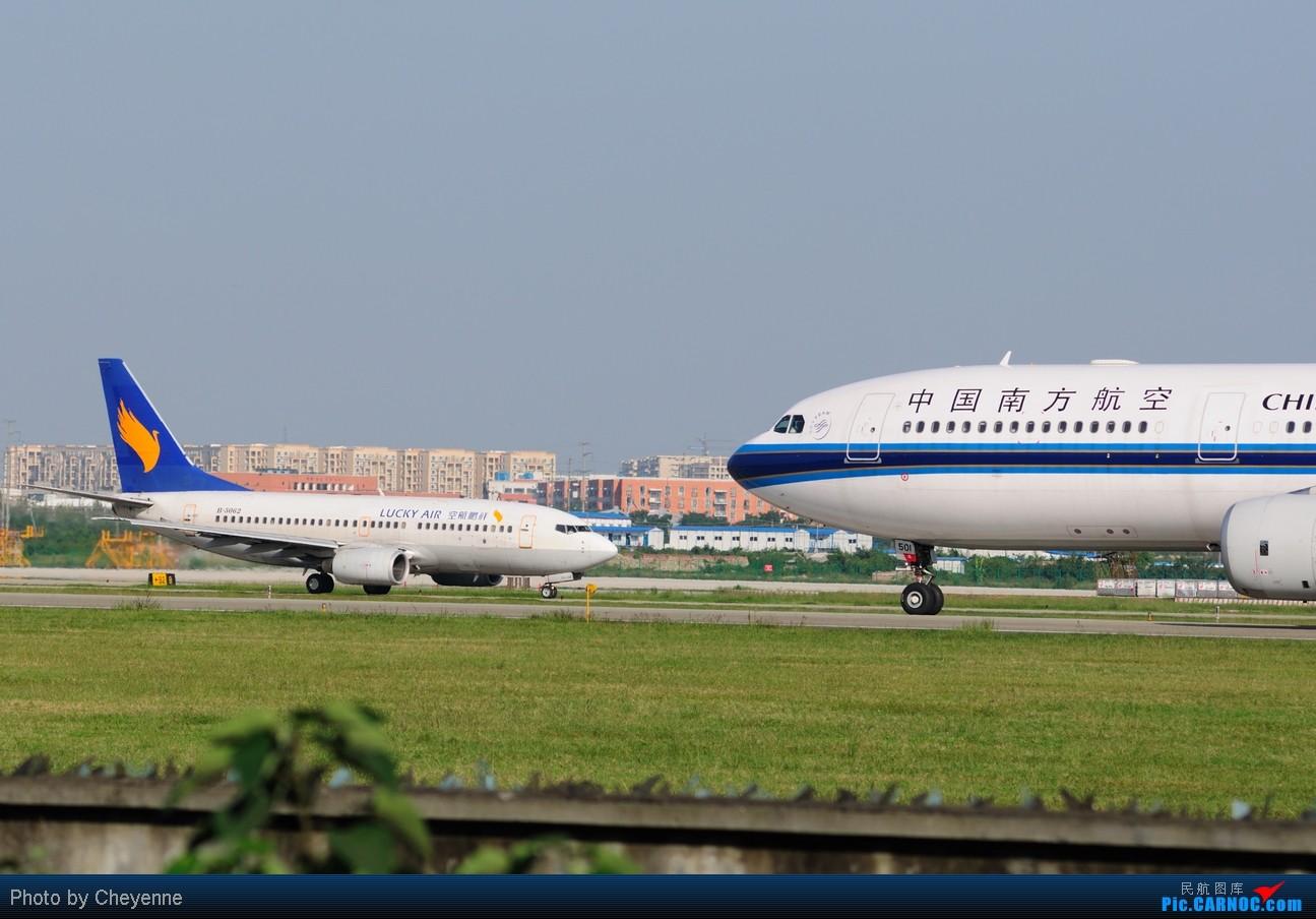 Re:[原创]晴空万里贺佳节,婵娟金凤舞双流! AIRBUS A330-300 B-6501 中国成都双流机场