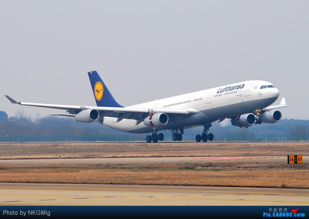 """Re:【NKG】第一次拍A340就收到""""大礼""""!和大家一起分享汉莎的惊险降落! AIRBUS A340-300 D-AIFD 中国南京禄口机场"""