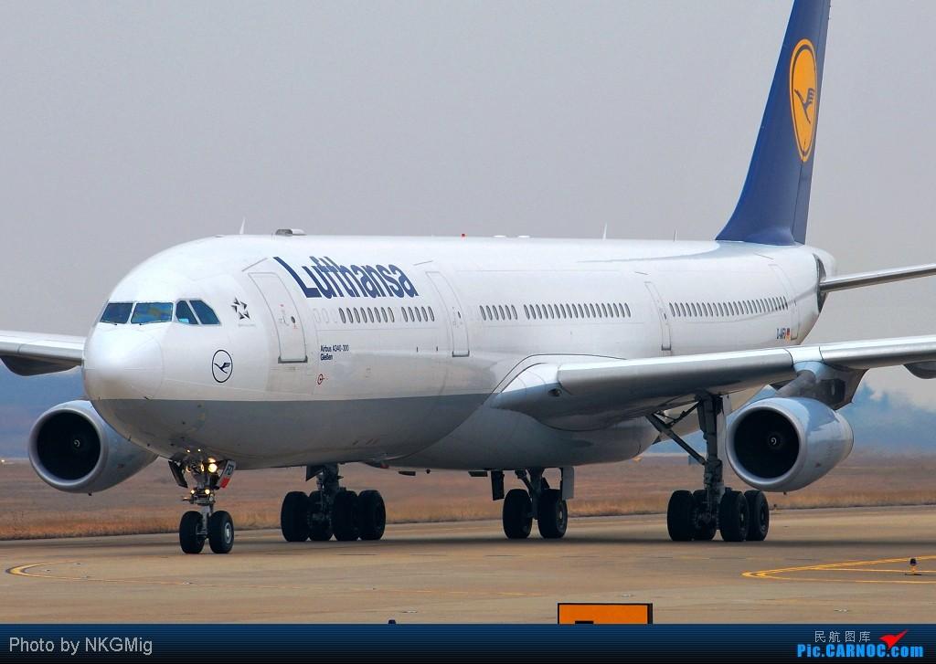 """Re:[原创]【NKG】第一次拍A340就收到""""大礼""""!和大家一起分享汉莎的惊险降落! AIRBUS A340-300 D-AIFD 中国南京禄口机场"""