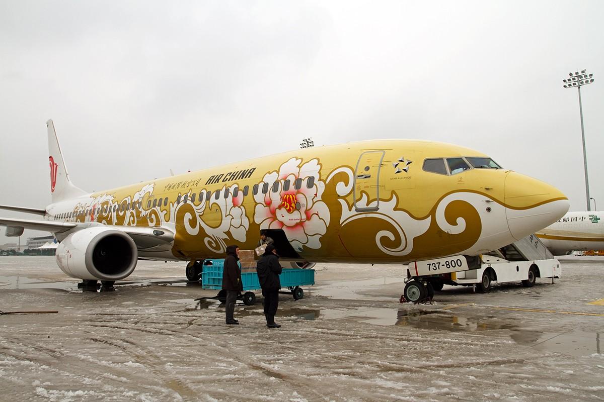 """[原创]【BLDDQ】******踩着冰渣去看""""金牡丹""""****** BOEING 737-800 B-5390 中国南京禄口机场"""