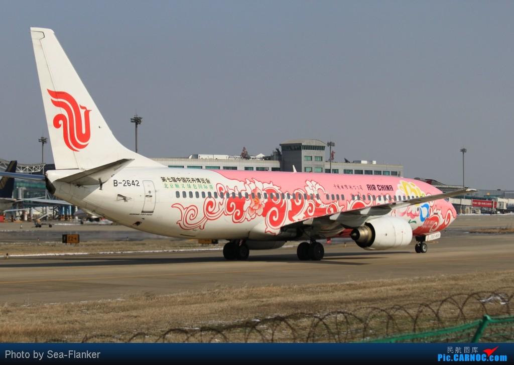 "Re:[原创]【BLDDQ】******踩着冰渣去看""金牡丹""****** BOEING 737-800 B-2642 中国南京禄口机场"