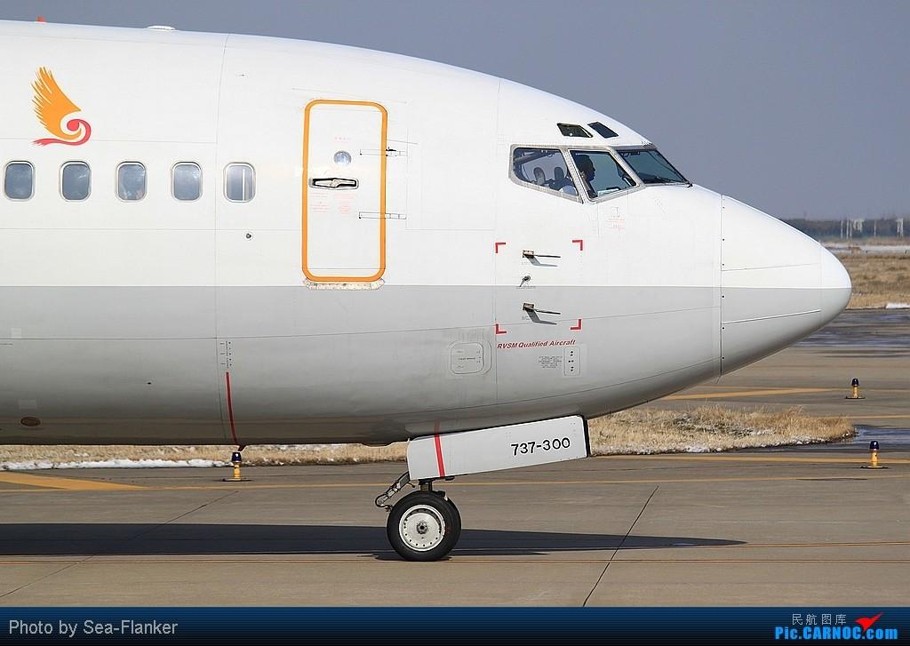 Re:[原创]【NKG】发些最常见但也是百看不厌的:小小庆祝一下自己升737级 BOEING 737-300 B-2982 中国南京禄口机场