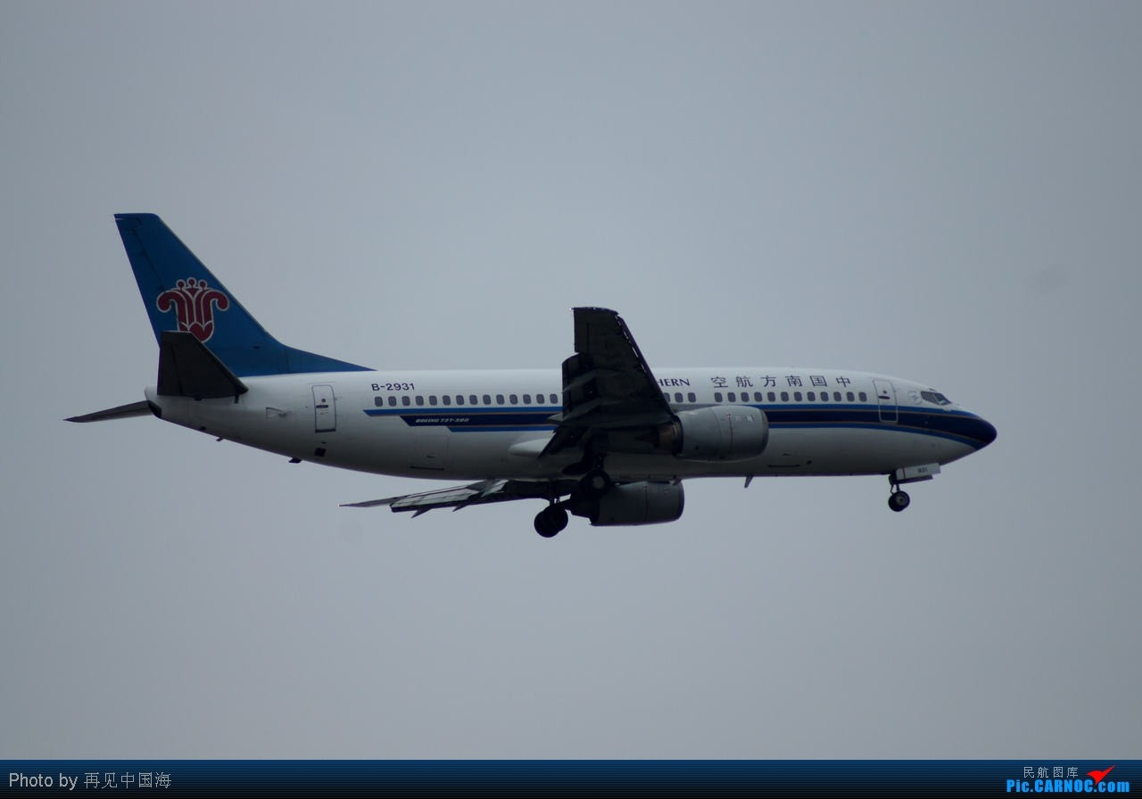 Re:[原创]W 边走边拍机(初次拍机) 海天三路站是个好地方 A网上叫stevenxi的A网的DAVID叫你回上海吃饭了 BOEING 737-300 B-2931 中国上海浦东机场