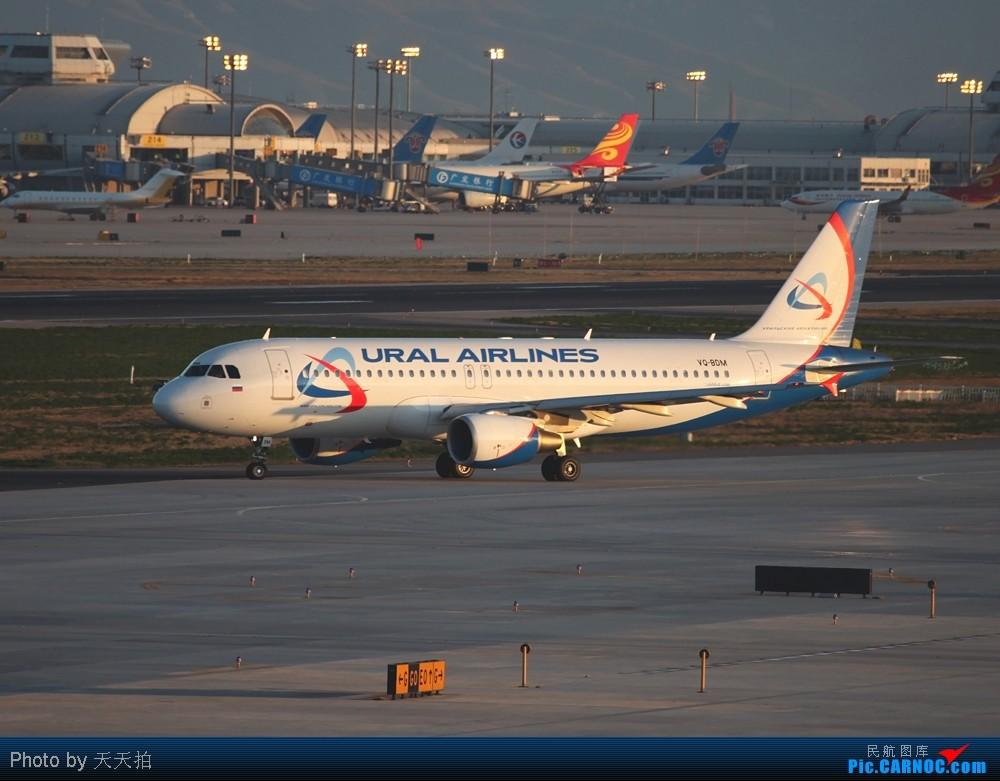Re:雨过清晨看俄罗斯乌拉尔航空A320 AIRBUS A320 VQ-BDM 北京首都机场