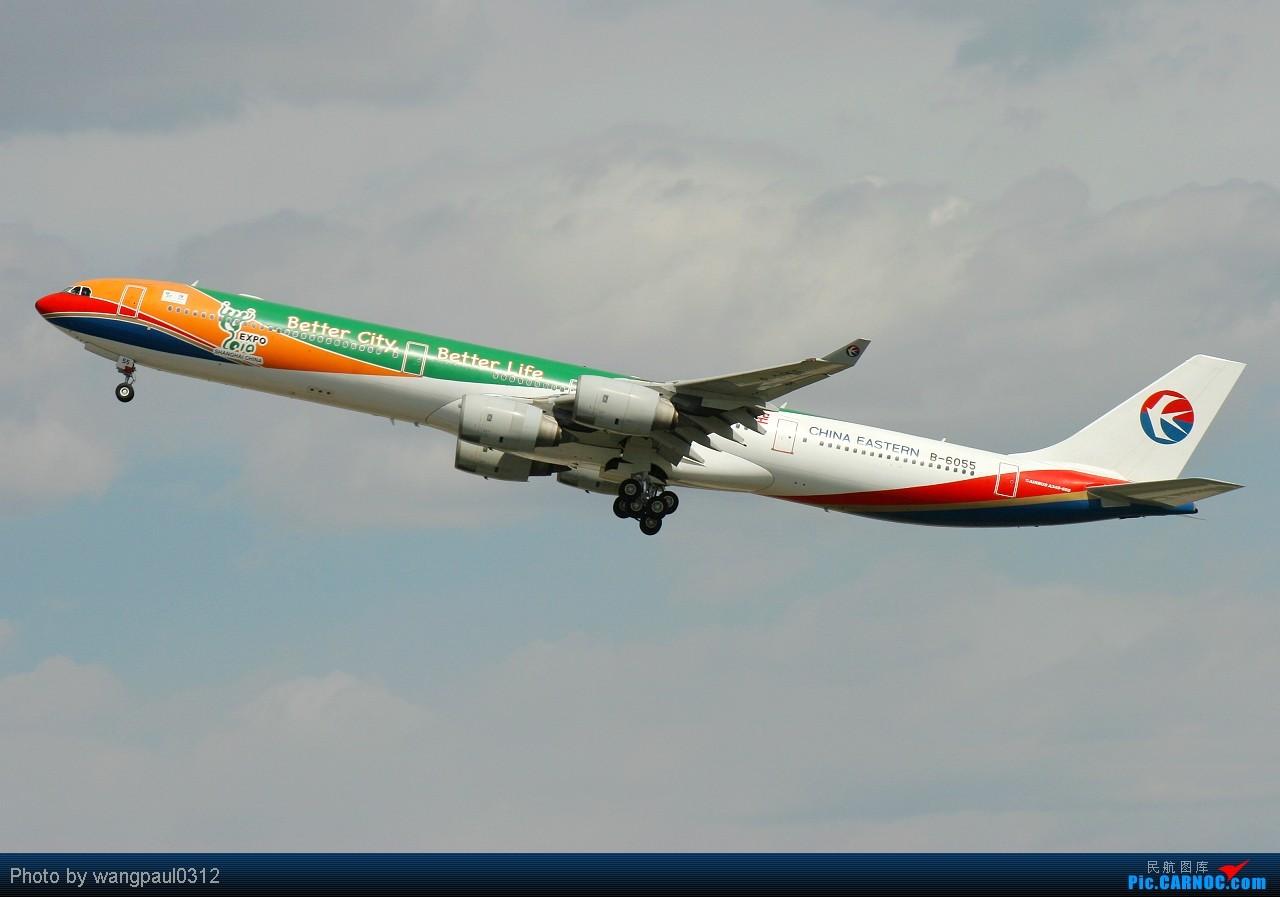 [原创]世博会马上就要开幕了,发个最大的世博题材彩绘机大家看看 AIRBUS A340-600 B-6055 北京首都国际机场
