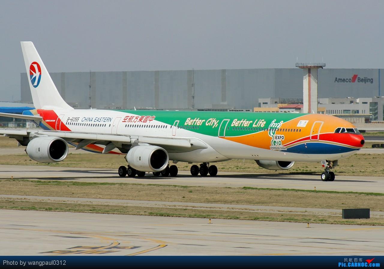 Re:[原创]世博会马上就要开幕了,发个最大的世博题材彩绘机大家看看 AIRBUS A340-600 B-6055 北京首都国际机场