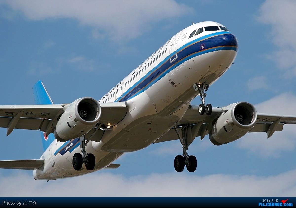 【blddq】南航和上海的新飞机 airbus a320-232 b-6641 中国昆明图片