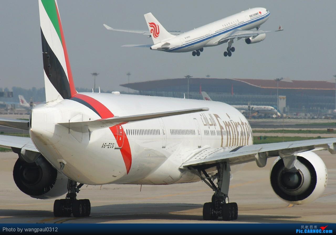 Re:[原创]贡献一组大头照!顶帖送飞机!跟帖同一架飞机送五架!(每人只限一次) BOEING 777-31H(ER) A6-ECG 北京首都国际机场