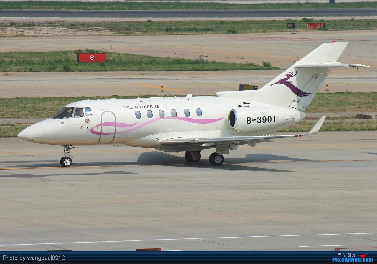 Re:[原创]恭喜论坛升级!【大大小小公务机】空客-伊留申-雅克-湾流-快车-豪客-挑战者-ERJ RAYTHEON HAWKER 850XP B-3901 北京首都国际机场