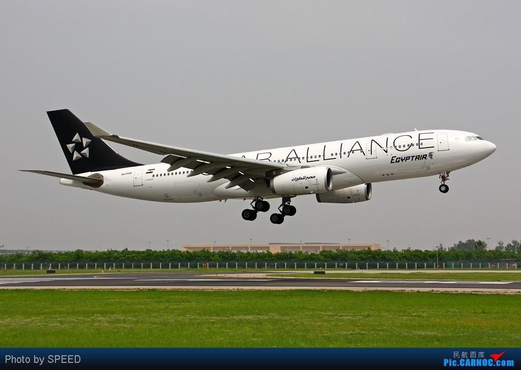 """Re:[原创]""""众里寻她千百度,蓦然回首那人却在灯火阑珊处""""-埃及星星的故事 AIRBUS A330-200 SU-GCK"""